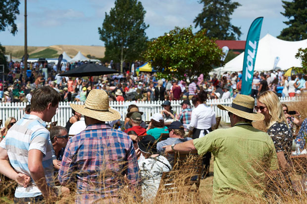 The Marlborough Wine and Food Festival